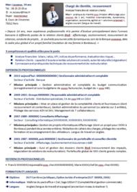 Modele CV par competences, vignette PDF