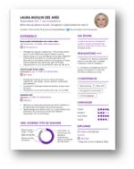 CV Design ombre